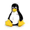 VNC Viewer for Linux
